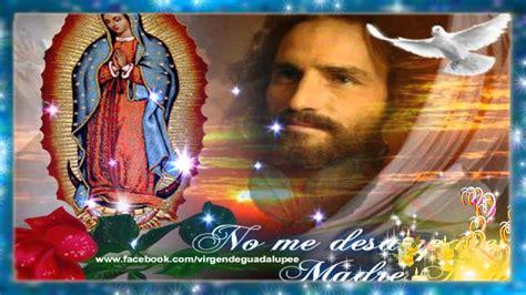 www fotos de vajinas virgen poema a la virgen maria apexwallpapers com