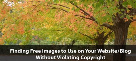 free use images ultimate guide to finding free images to use on your