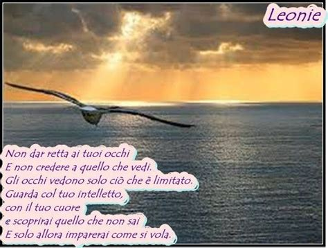 frasi il gabbiano jonathan 259 best images about frasi celebri on