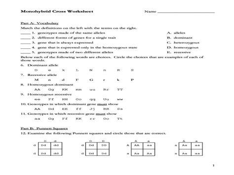 Monohybrid Cross Worksheet Answers by Worksheet Handy Monohybrid Cross Worksheet Answers To