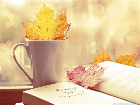 books and coffee wallpaper hd wonderful autumn leaves onbook wallpapers 2560 215 1920