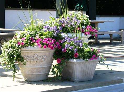 flower planter ideas planting trees in large flower pots front yard landscaping ideas
