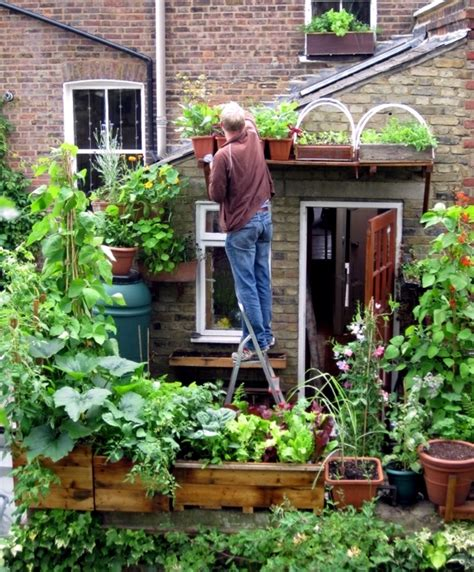 creating a raised bed vegetable garden vegetables on the balcony creating a raised bed garden