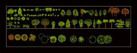 trees shrubs  pot plants  dwg block  autocad