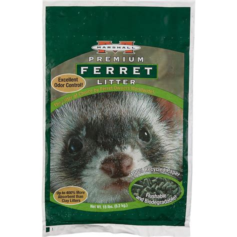 ferret bedding what s the best ferret bedding articleeducation x fc2 com