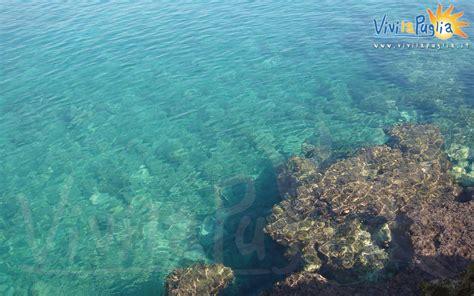 mare puglia pin mare puglia on