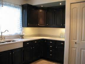 Kitchen Cabinets In Black Paint » Home Design 2017
