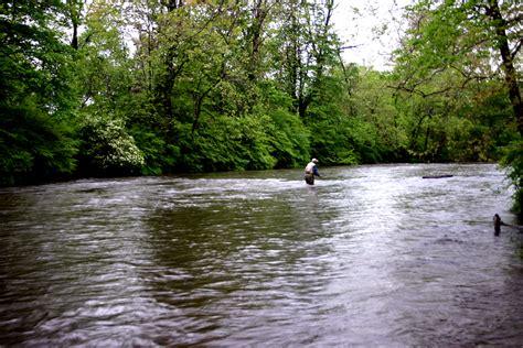 yellow fly fishing fly fishing yellow breeches creek pennsylvania