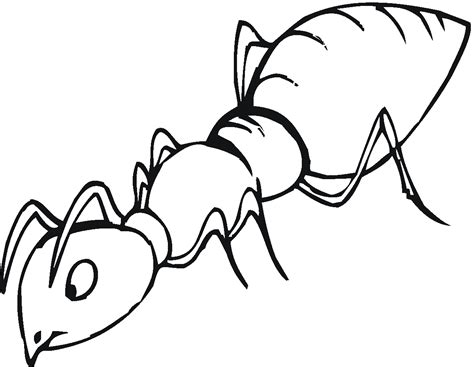 ant coloring pages free printable ant coloring pages for