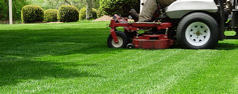 Spring Lawn Cleanup Landscape Company Lawn Maintenance The Landscape Company