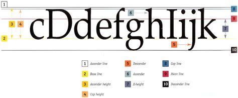 typography letter parts rtcgraphics anatomy