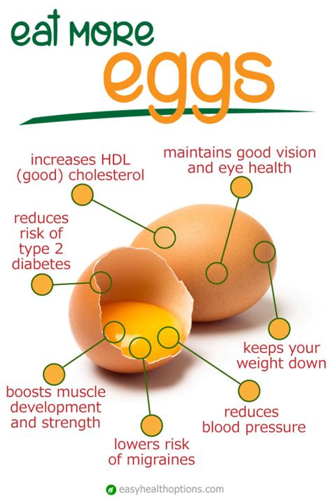 protein 6 eggs protein content in eggs diet consultantgala