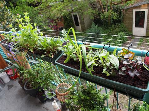 Gardening Ideas For Balcony Blooming Your Balcony Gardening Tips For Apartment And Condo Dwellers Shop April 2015 Toronto