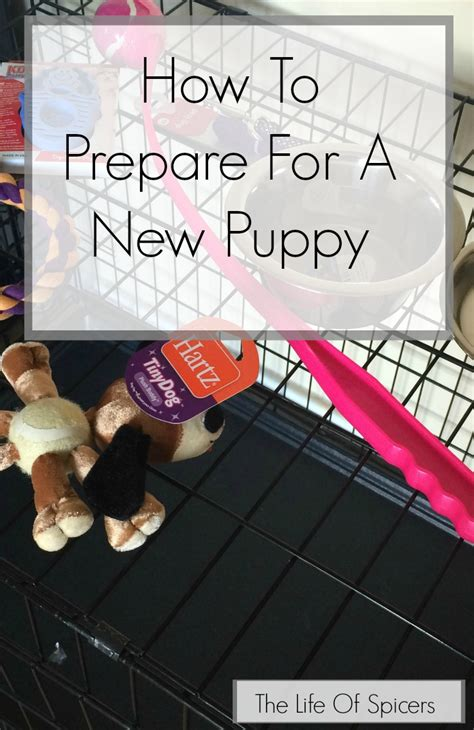 how to prepare for a new puppy how to prepare for a new puppy the of spicers