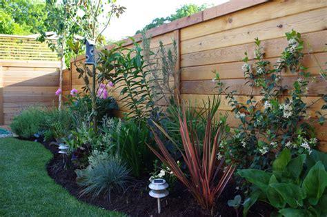 Plants For Backyard Landscaping by Aloe Test Garden