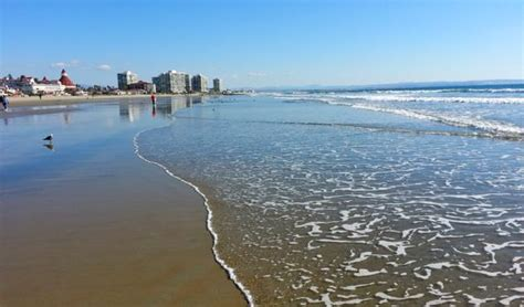 friendly beaches san diego the best beaches in the world for family vacations