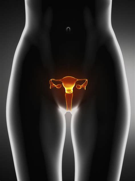 anal after c section had a ct done told i have one 22cm fibroid doctor