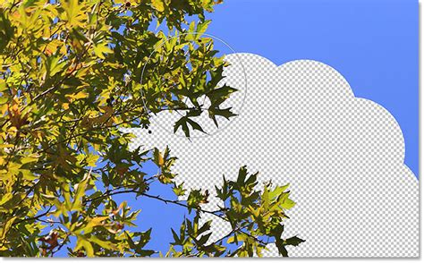 photoshop background eraser how to use the background eraser tool in photoshop