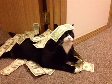 Komik Money Rich No 1 5 everything around me the humorous