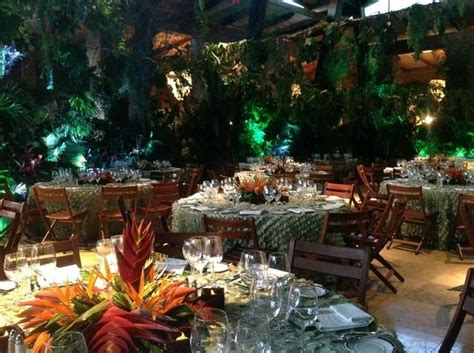 tropical rainforest themed party google search jungle