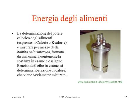 potere calorico alimenti elementi di bioenergetica ppt scaricare