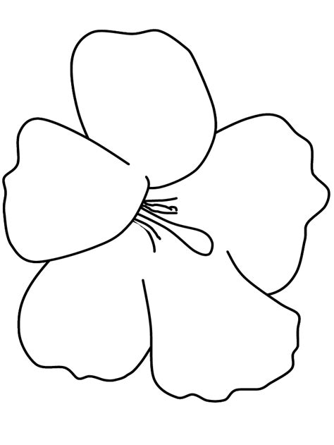 printable pictures of hawaiian flowers tropical flower coloring pages coloring home