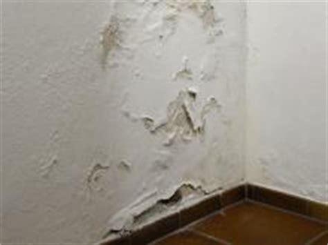 putz reparieren innen so dichten sie eine feuchte kellerwand innen ab bauhaus