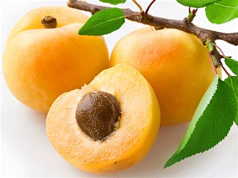 3 fruits name 30 fruit names to fruit names a z with