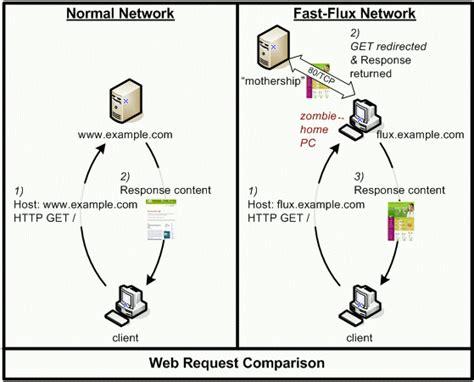 flux diagram fast flux web diagram the honeynet project