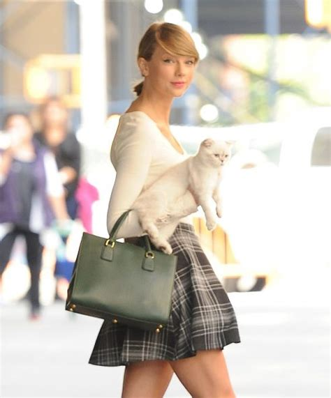 taylor swift cats movie taylor swift cats singer to star in movie adaption of