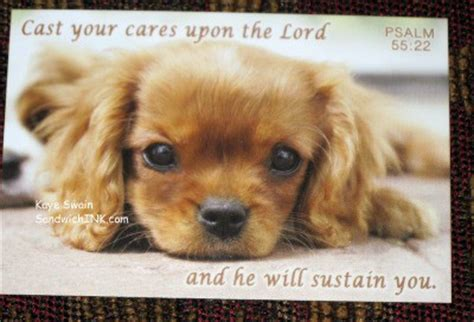 bible verses about dogs dogs in the bible quotes quotesgram