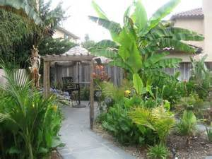 Small Tropical Backyard Ideas Tropical Backyard For The House Pinterest