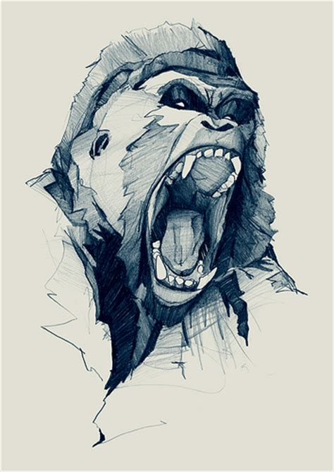 best illustration drawing graphic gorilla ink images on