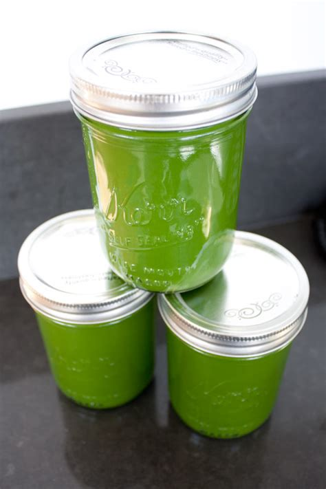 Detox For Dummies by Juicing For Dummies