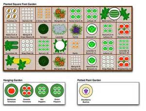 Companion Gardening Layout How Many Plants To Grow Per Square Garden Gardens Watermelon And Vegetable Garden