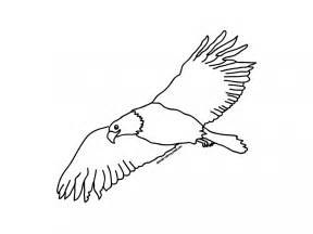 Flying Eagle Outline by Bald Eagle Outline Cliparts Co