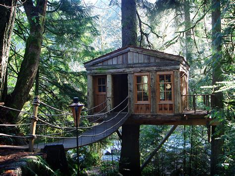 tree house home styles tree houses style design