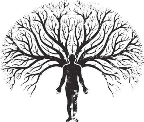 pdf libro la memoria de los arboles the memory of trees descargar limpieza del 193 rbol geneal 243 gico la prosperidad
