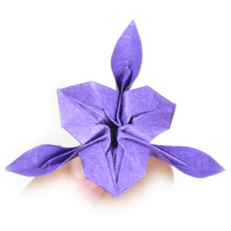 Iris Flower Origami - how to make an origami iris flower page 25