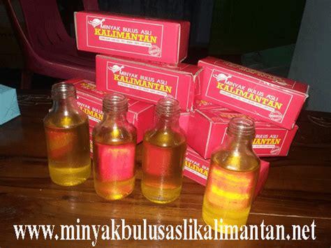 Minyak Bulus Untuk Wajah manfaat minyak bulus untuk wanita manfaat minyak lintah