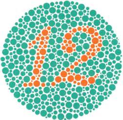 ishihara color test ishihara color blindness test the ishihara color