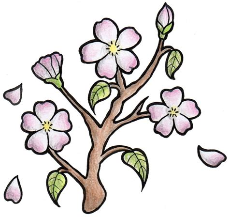 Easy To Draw Japanese Flowers by Cherry Blossom Design Cherryblossom Japanese