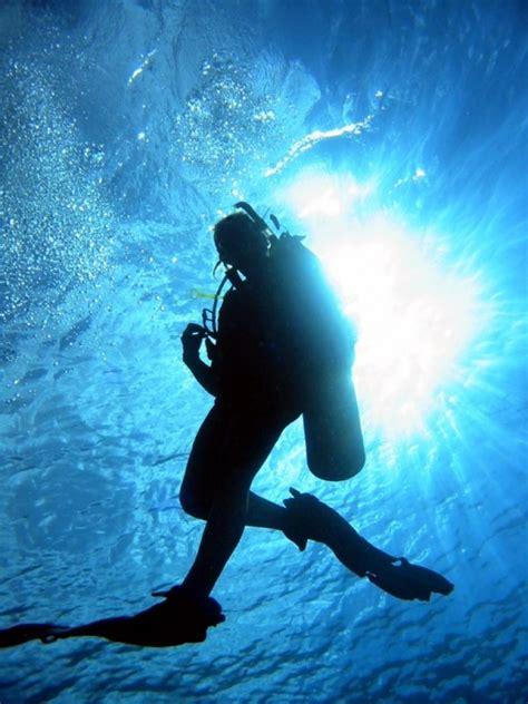 scuba dive reaper list activity sections 187 scuba diving
