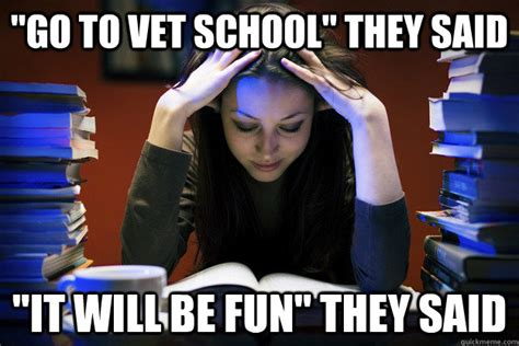 Vet Memes - quot go to vet school quot they said quot it will be fun quot they said