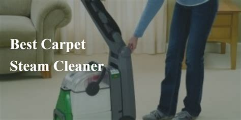 rug doctor cat urine remove cat urine from carpet steam cleaner carpet review