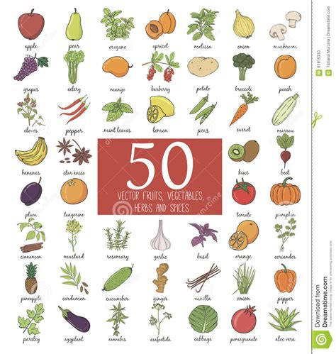 a to z vegetables names with pictures doodle fruits and vegetables stock illustration