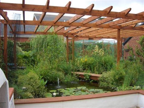 pond  pergola grows