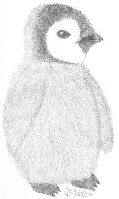 cute animal drawings in pencil - Google Search | Baby