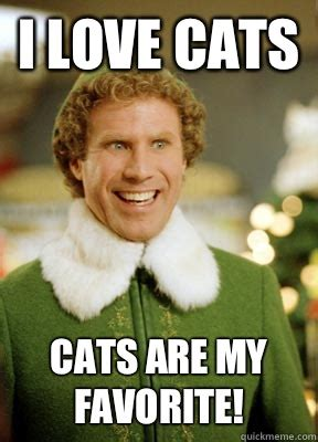 I Love Cats Meme - i love cats cats are my favorite buddy the elf quickmeme