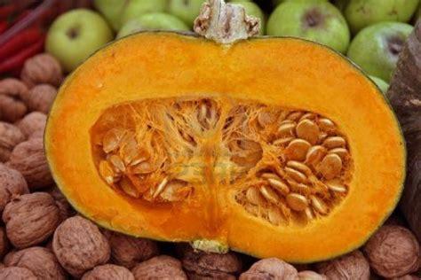 Blue Pumpkins Fruit Cutters And Pretty Stuff by Pumpkin Skins For Treatment